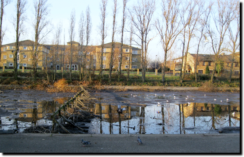 Barking Park Drained Lake 31st January 2011